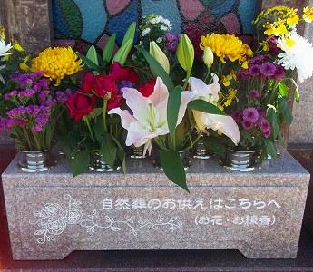 バラ樹木葬
