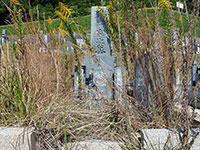 墓所の確認とお見積り