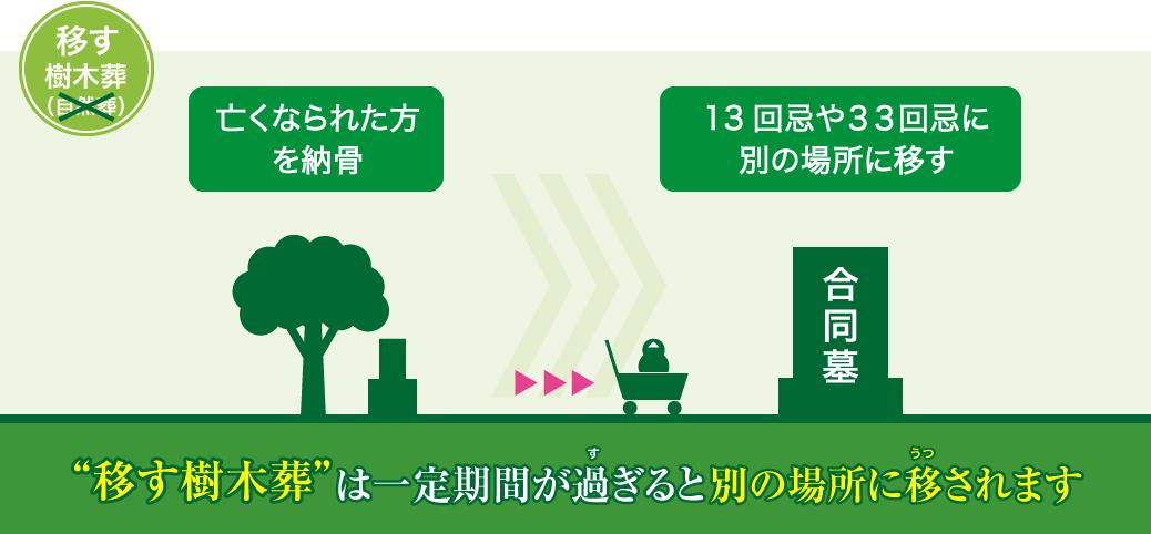 移す樹木葬は一定期間が過ぎると別の場所に移されます。
