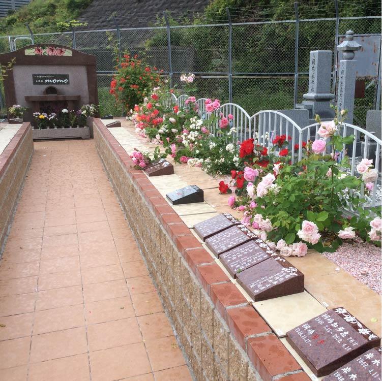 さくらの樹木葬(個別)